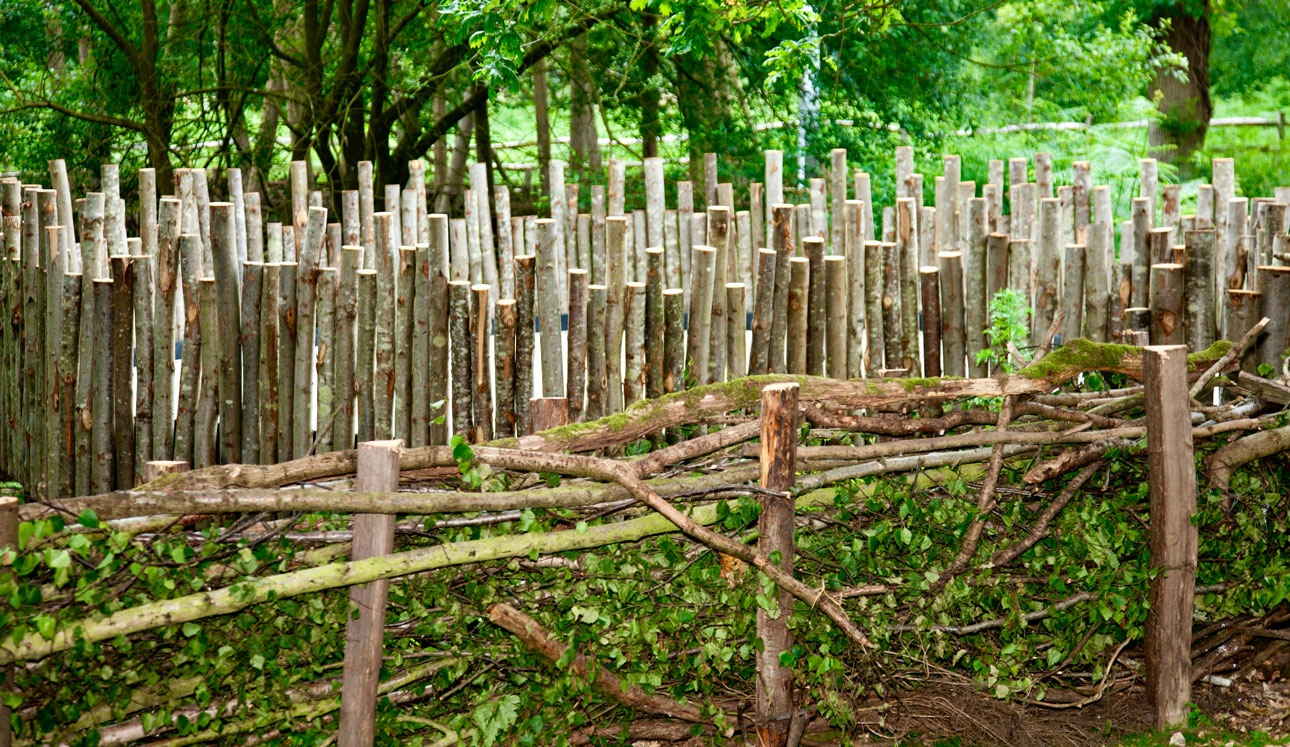 Stripped rustic timber poles forming dead hedge to provide natural habitat for wildlife in children's garden
