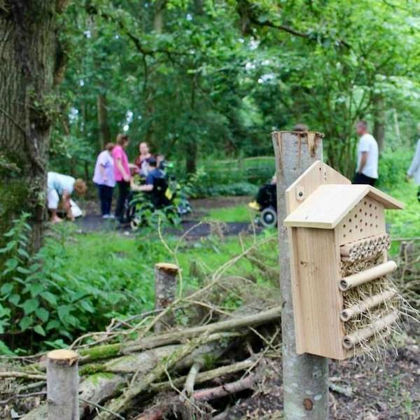 Wildlife friendly bug hotels to provide habitat for ladybirds, hoverflies, solitary bees and other insects in the garden