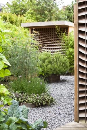 Edible potager urban garden