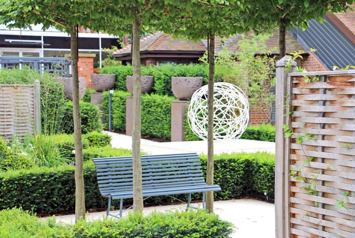 Oak fencing and parasol trees above garden bench in courtyard at Sopwell House hotel, by garden designer Ann-Marie Powell.