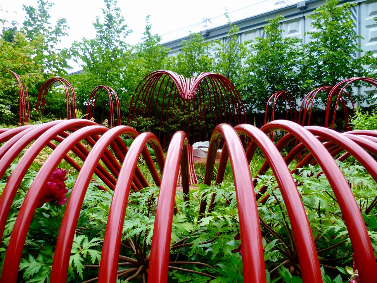 Chelsea flower show new garden design by Ann-Marie Powell with green perennials under arching structures