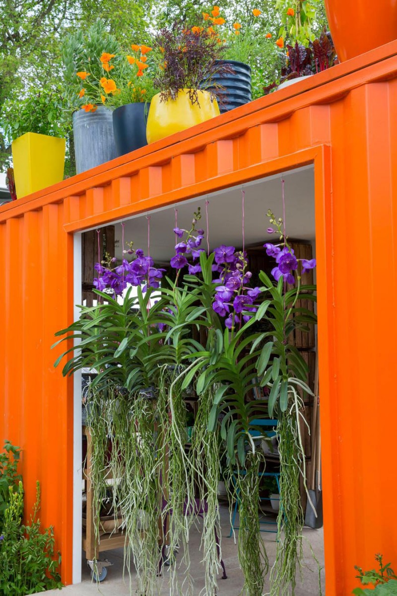 RHS Feature garden for health and wellbeing at Chelsea flower show with hanging orchids from orange shipping container