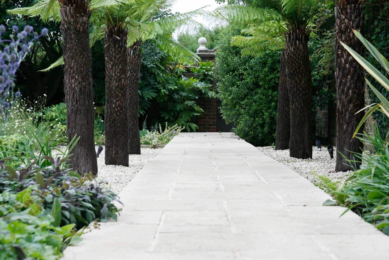 Dicksonia antarctica tree ferns lining york stone paving in exclusive hotel garden designed by Ann-Marie Powell