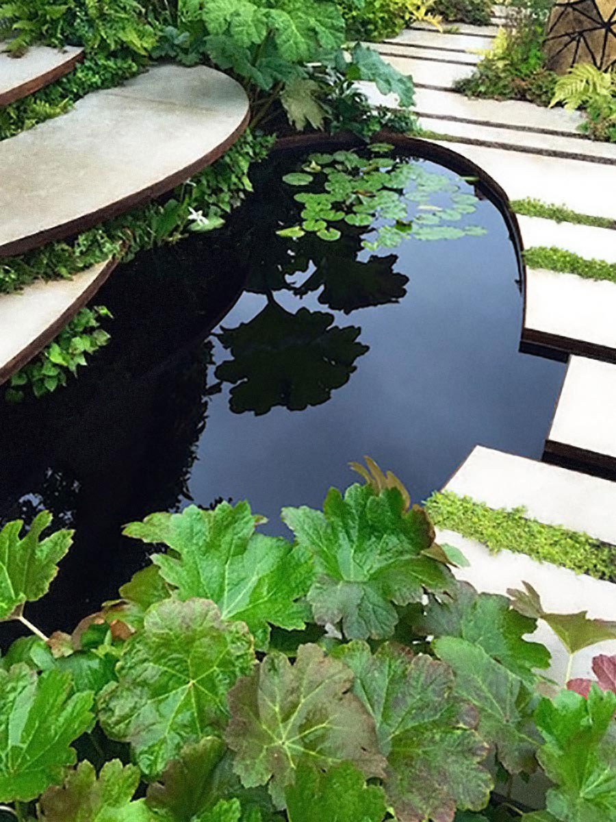Formal pond planted with dwarf water lilies and Darmera peltata edged with curved porcelain paving slabs and stepping stones