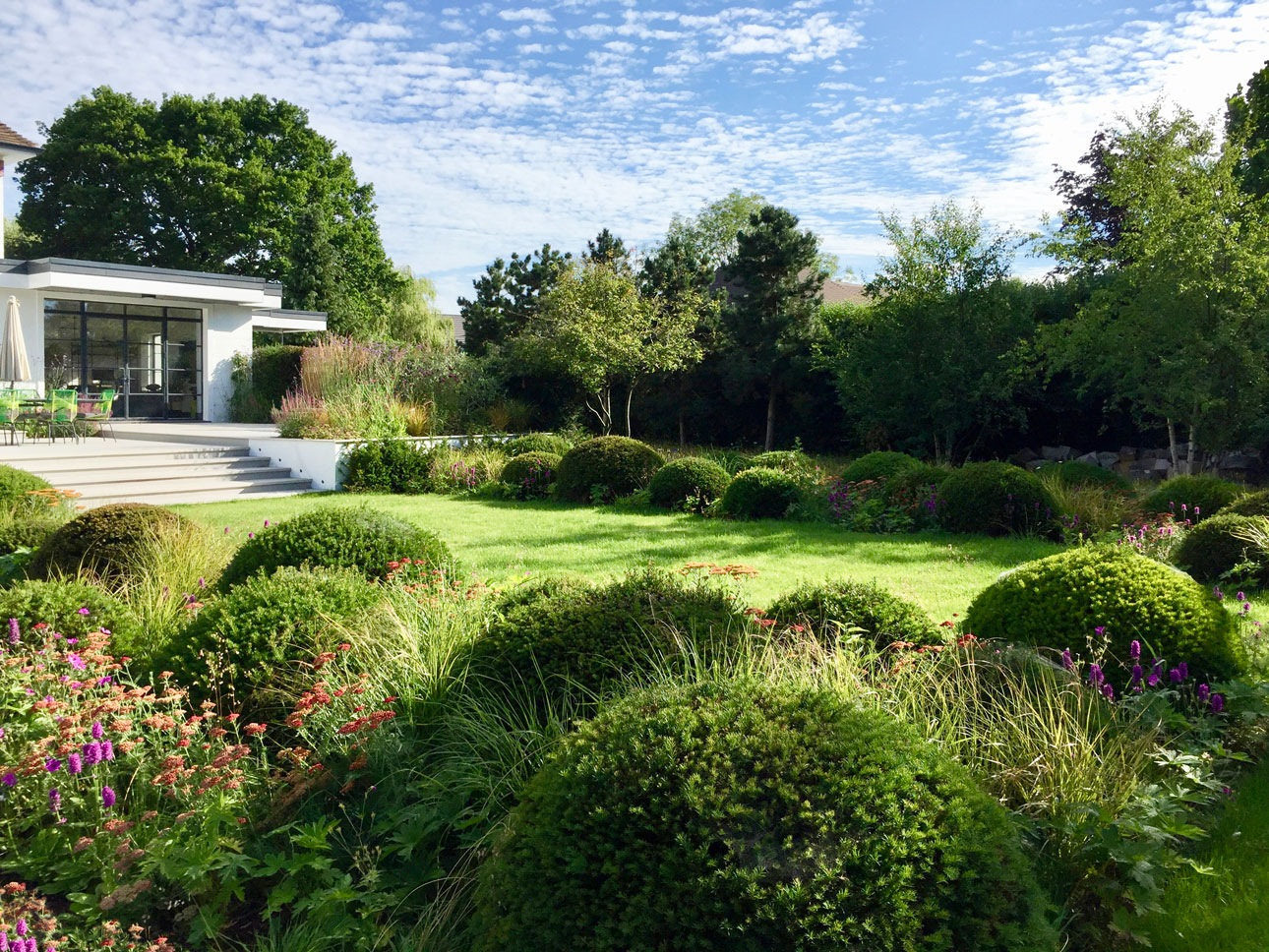 Yew topiary cushions in mixed perennial beds either side of lawn in West Sussex garden design