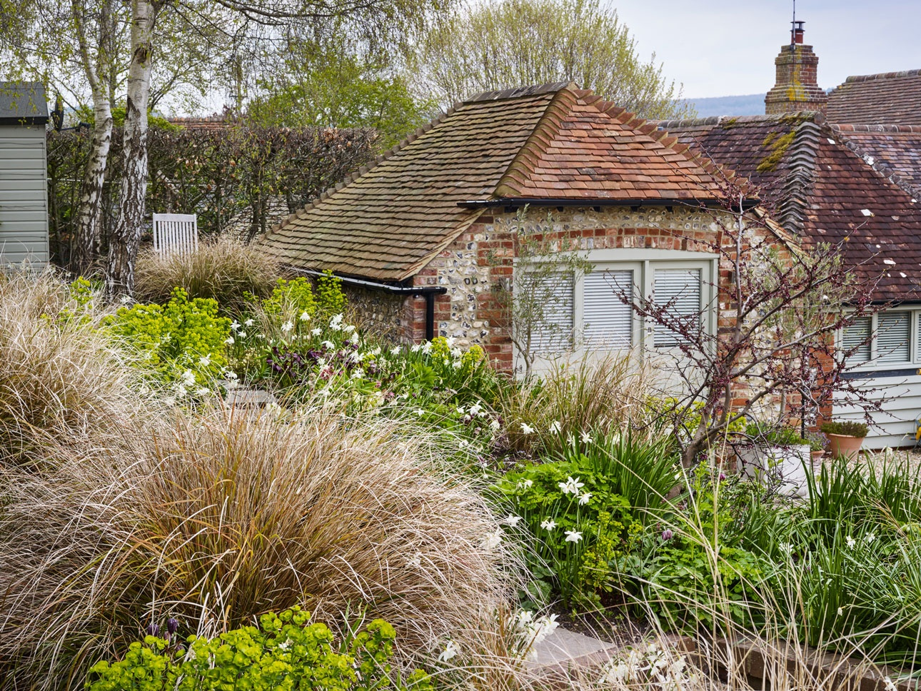 Anemanthele, Pheasant grasses with green Euphorbia underplanted with spring bulbs in West Sussex new garden design