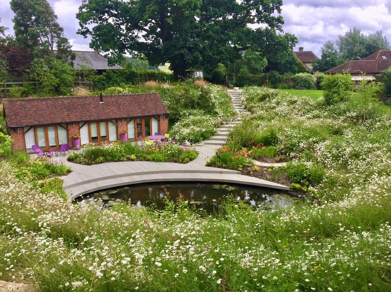 Steep wildflower meadows leading to swimming pond in Hampshire Garden design ideal for pollinators and other wildlife