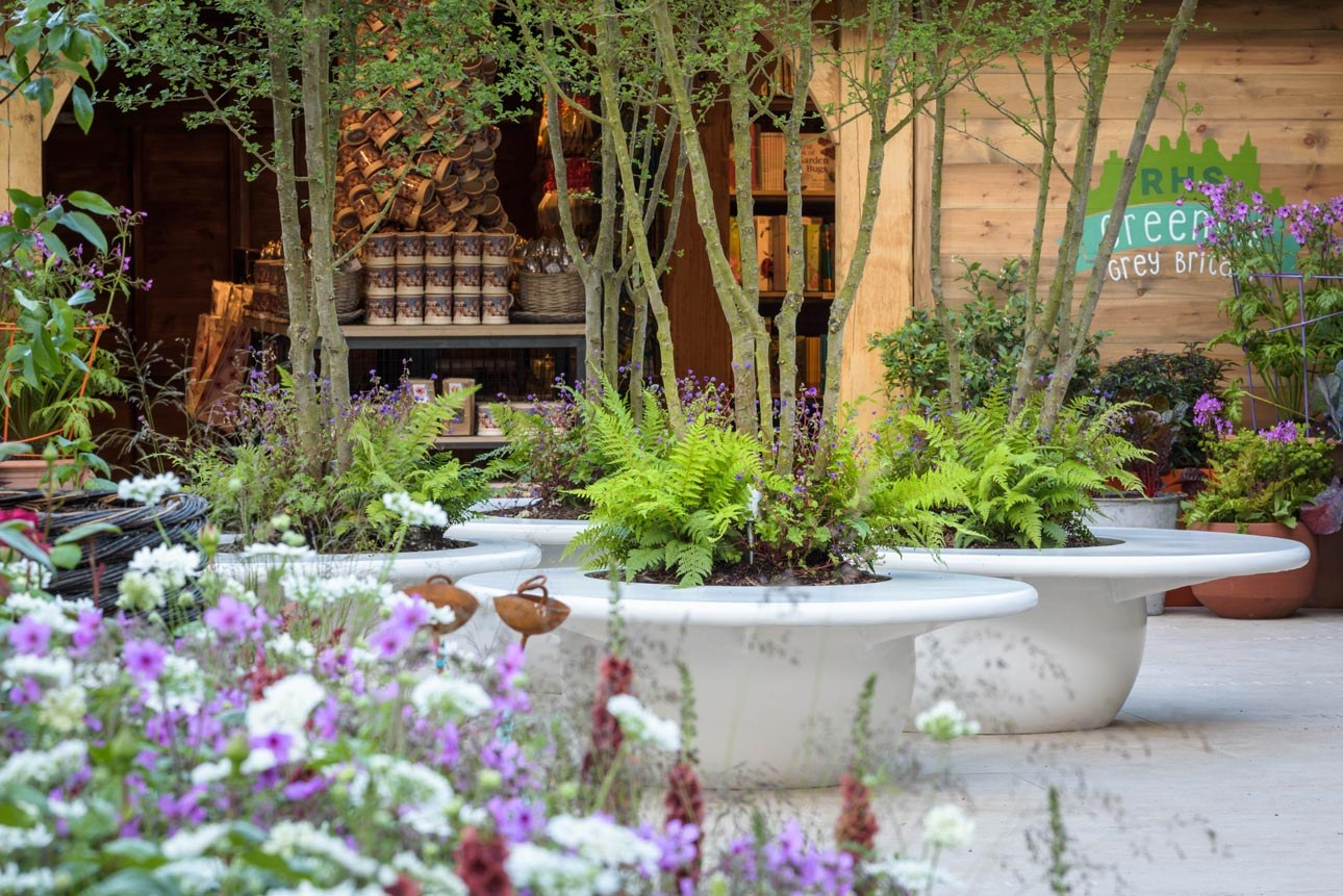 Courtyard fibreglass planter seats with hawthorn, ferns & flowers by RHS Greening Grey Britain pavilion at RHS Chelsea 2016