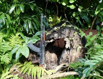 AK-47 assault rifle against a log