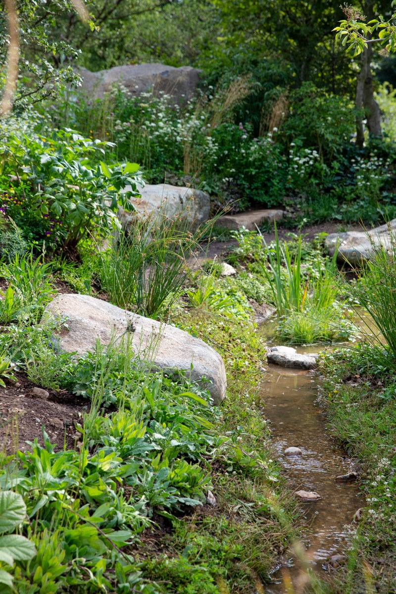 Gravel lined wildlife stream edged with aquatic plants perfect for pollinators for RHS show garden for BBC Countryfile