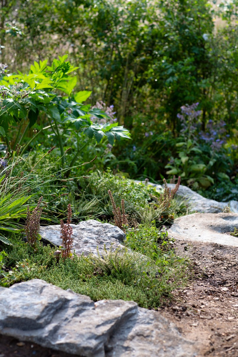 Stoney slate path in naturalistic landscape design by Ann-Marie Powell Gardens for RHS Hampton Court Flower Show