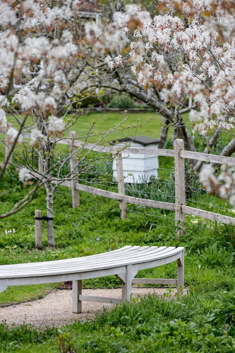 Beehive, spring flowering amelanchier in rural countryside garden for pollinators and wildlife in West Sussex garden design.