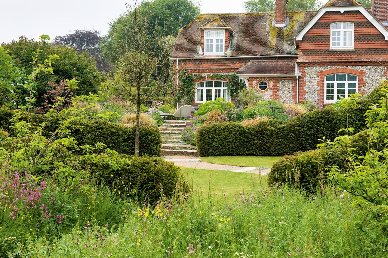 Meadow, lawn, cloud pruned yew, taxus baccata hedging and wildlife plants for pollinators in cottage garden, west sussex.