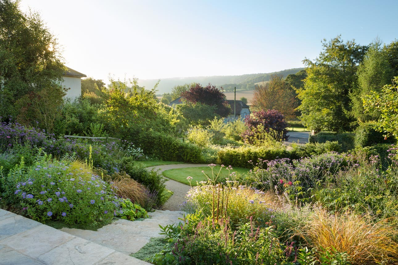 Late summer, naturalistic planting in sloping garden down to lawn with self-binding gravel path for sustainability, Stoughton.