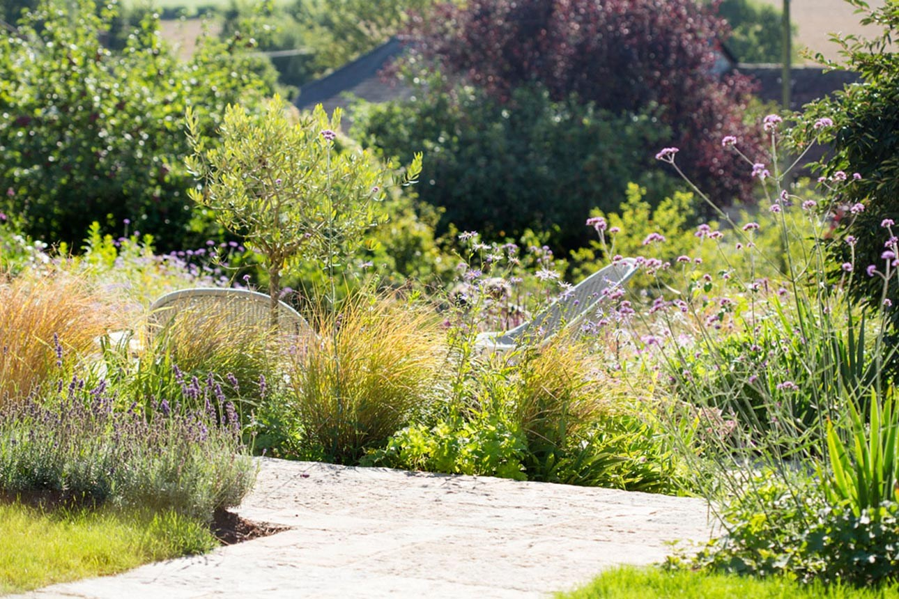 Purbeck stone terrace with low garden seating in informal cottage planting with Verbena bonariensis, grasses and lavender.