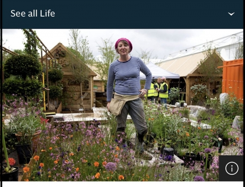 Ann-Marie Powell featured in The Telegraph 24th May 2020