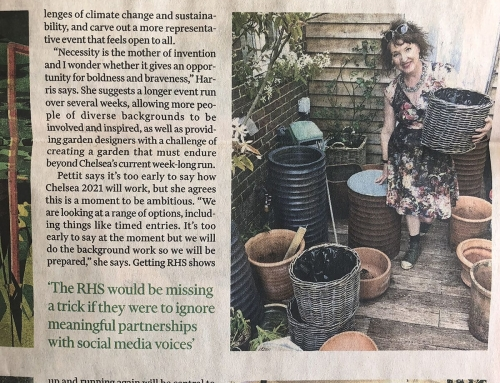 Ann-Marie Powell features in the Financial Times May 29th 2020