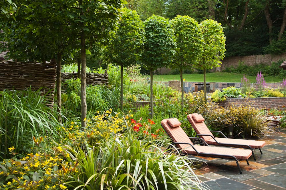 Contemporary cottage garden with rustic atmosphere, with mature standard hornbeam, design by Ann-Marie Powell, Petersfield.