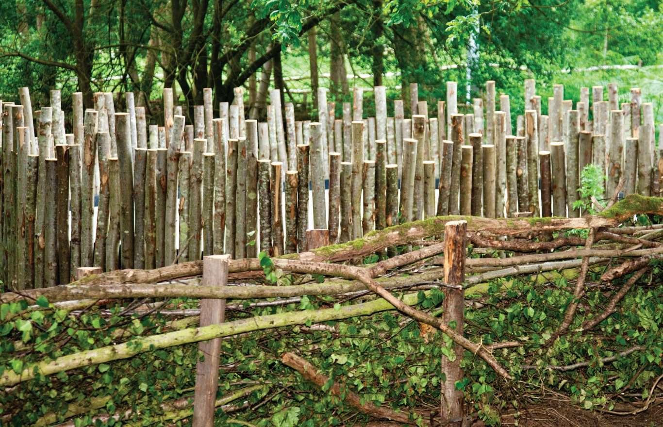 Dead hedgerow to attract wildlife in Children's Hospice Garden