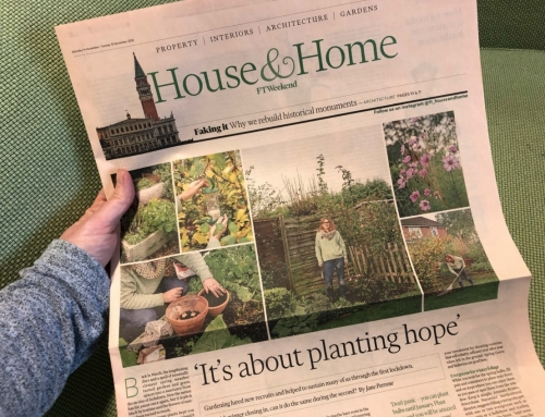 """It's about planting hope""says Ann-Marie Powell in the Financial Times"
