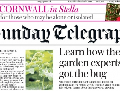 Sunday Telegraph – Learn how the garden experts got the bug.