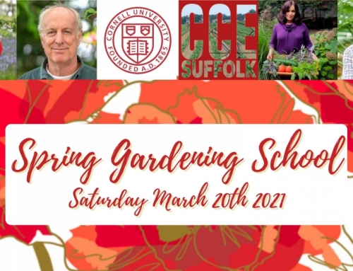 Speaking Stateside – Ann-Marie joins Cornell Cooperative Extension of Suffolk County's Spring Gardening School Programme