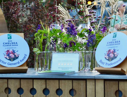 A Hat Trick of Awards at the RHS Chelsea Flower Show for AMPG